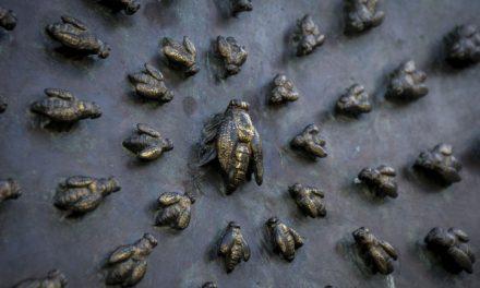 Le api di Ferdinando Storia e simbologie nascoste della statua di Santissima Annunziata